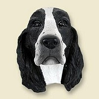 Springer Spaniel Black & White Magnet