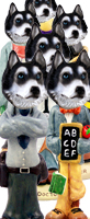 Husky Black & White w/Blue Eyes Doogie Characters