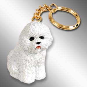 Your Bichon Frise/'s Photo on a Keychain