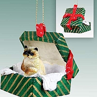 Ragdoll Gift Box Green Ornament