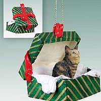Brown Maine Coon Cat Gift Box Green Ornament