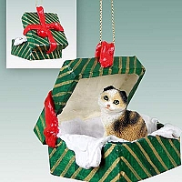 Tortoise & White Scottish Fold Gift Box Green Ornament
