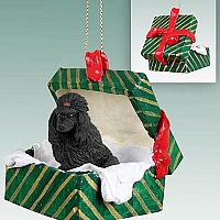 Poodle Black Gift Box Green Ornament