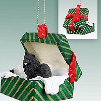 Pomeranian Black Gift Box Green Ornament