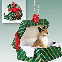 Collie Smoth Hair Gift Box Green Ornament