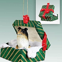 Collie Tricolor Gift Box Green Ornament