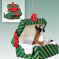 Boxer Gift Box Green Ornament