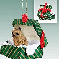 Brussels Griffon Red Gift Box Green Ornament