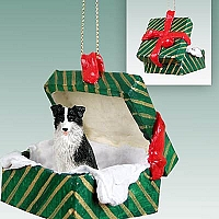 Border Collie Gift Box Green Ornament