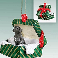 German Short Haired Pointer Gift Box Green Ornament