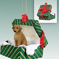 Rhodesian Ridgeback Gift Box Green Ornament