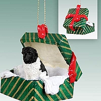 Landseer Gift Box Green Ornament