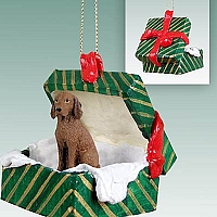 Vizsla Gift Box Green Ornament