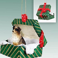 Australian Shepherd Brown Gift Box Green Ornament