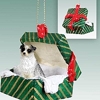 Australian Shepherd Blue Gift Box Green Ornament
