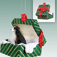 Australian Shepherd Tricolor w/Docked Tail Gift Box Green Ornament
