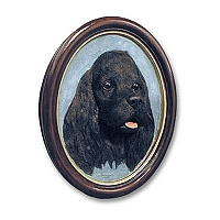 Cocker Spaniel Black Portrait