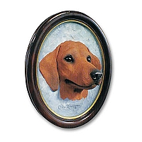 Dachshund Red Portrait