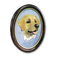 Labrador Retriever Yellow Portrait