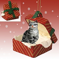 Silver Shorthaired Tabby Cat Gift Box Red Ornament