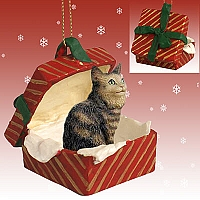 Brown Maine Coon Cat Gift Box Red Ornament