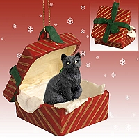 Black Shorthaired Tabby Cat Gift Box Red Ornament
