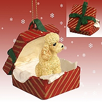 Poodle Apricot w/Sport Cut Gift Box Red Ornament
