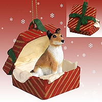 Collie Smoth Hair Gift Box Red Ornament