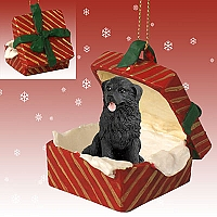 Newfoundland Gift Box Red Ornament
