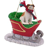 Jack Russell Terrier Brown & White w/Smooth Coat Sleigh Ride Ornament