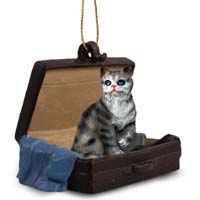 Silver Shorthaired Tabby Cat Traveling Companion