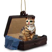 Brown Shorthaired Tabby Cat Traveling Companion