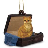 Red Shorthaired Tabby Cat Traveling Companion