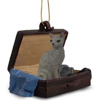 Blue Cornish Rex Traveling Companion