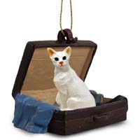White Oriental Shorthaired Traveling Companion