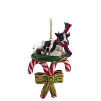 Holstein Bull Candy Cane Ornament