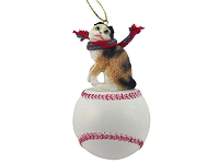 Tortoise & White Scottish Fold Baseball Ornament