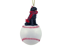 Newfoundland Baseball Ornament