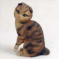 Scottish Fold Brown Tabby