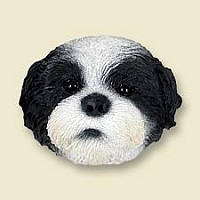 Shih Tzu Black & White w/Sport Cut Doogie Head