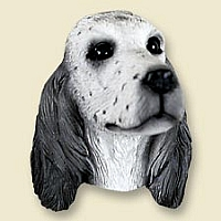 English Setter Belton Blue Doogie Head