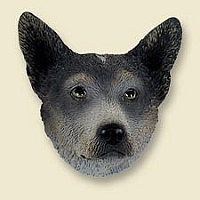 Australian Cattle BlueDog Doogie Head