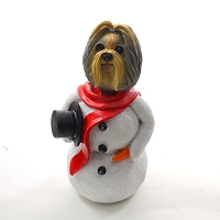 Shih Tzu Mixed  Jolly Holidog