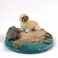 Lhasa Apso Brown w/Sport Cut Everyday Life Beach