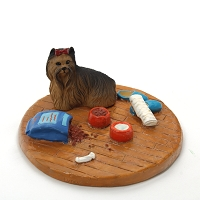Yorkshire Terrier Everyday life Home
