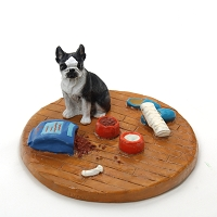 Boston Terrier Everyday life Home