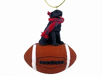 Newfoundland Football Ornament