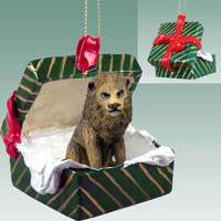 Lion Gift Box Green Ornament