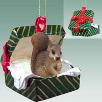 Squirrel Red Gift Box Green Ornament