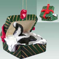 Skunk Gift Box Green Ornament